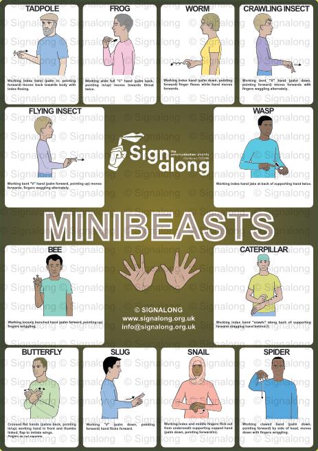 Mini Beasts Poster