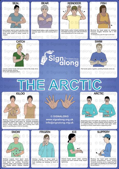 Arctic Poster